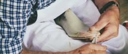 Govoni-calzature-artigianali-al-lavoro